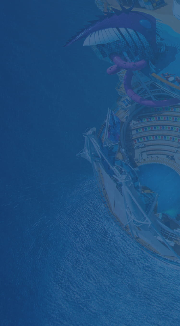 Aerial photograph of the Symphony of the Seas